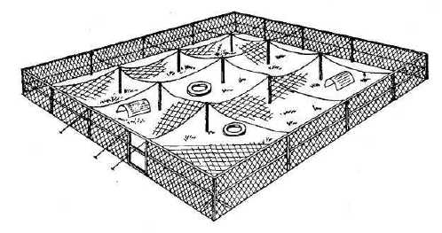 Схема вольера «зимний сад»