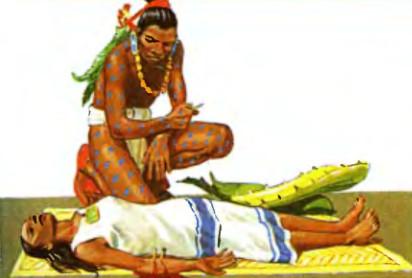 Использование индейцами кактусов в древние времена